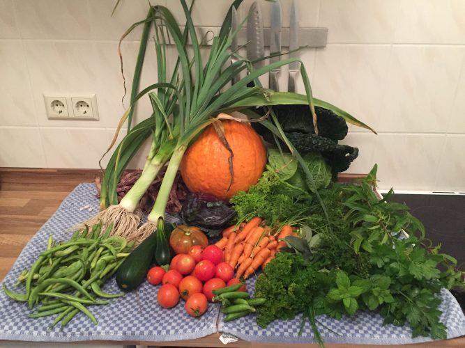 Zeit für Achtsamkeit: Gartenglück und Erntezeit