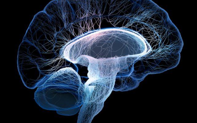 Über den Zusammenhang von Gehirnwellen und Entspannung