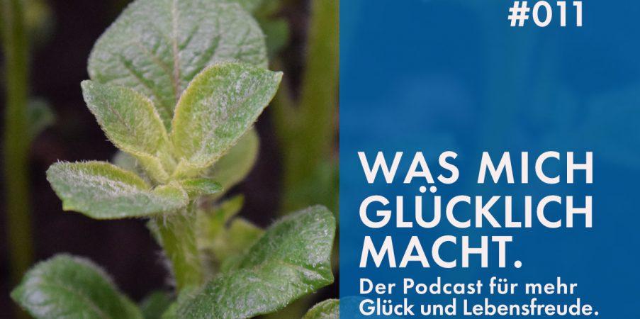 Podcast #011: Über die Bedeutung von Lieblingsplätzen.