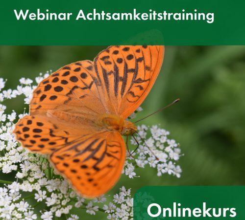 Onlinetraining & Webinare